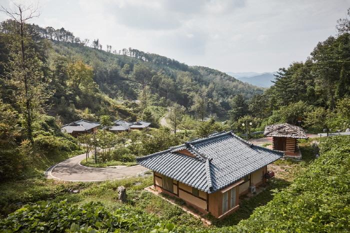 양평 맑은숲캠프