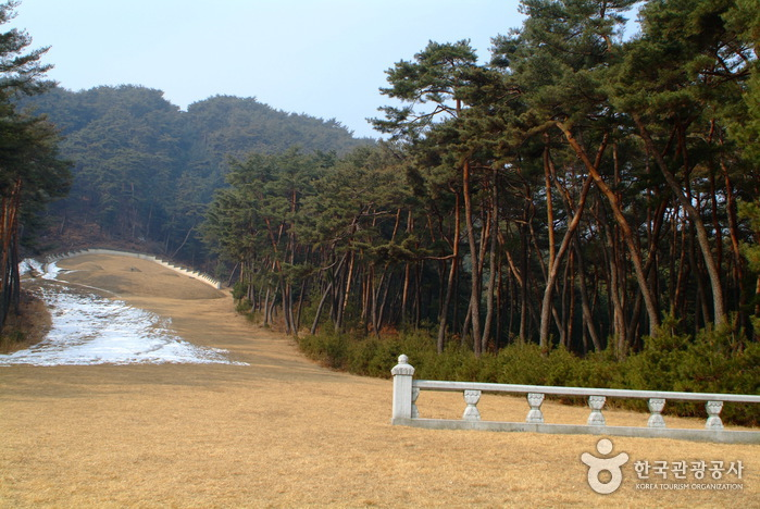 Graveyard of Sinjangjeolgong (신장절공묘역)