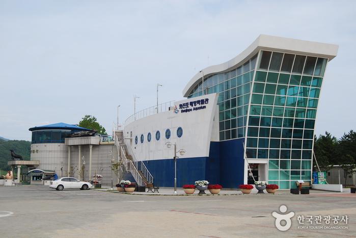 花津浦海洋博物館(화진포 해양박물관)