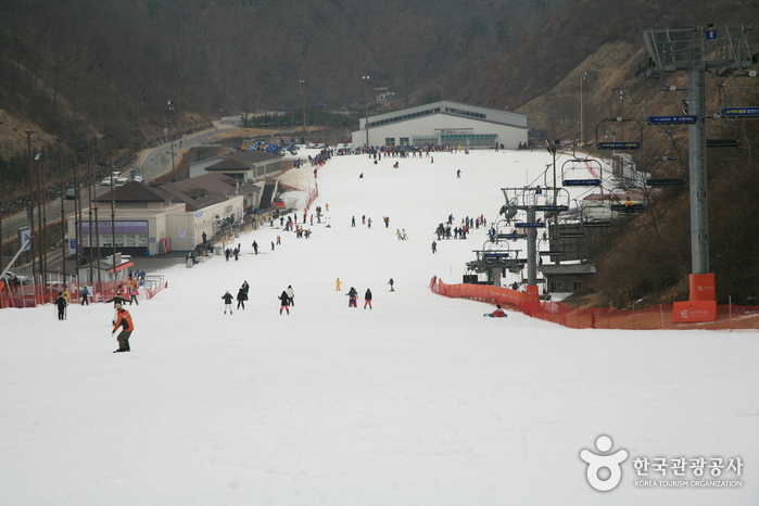 Elysian江村滑雪場(엘리시안 강촌 스키장)