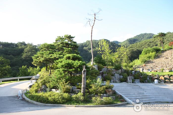 華川 碑木公園(화천 비목공원)