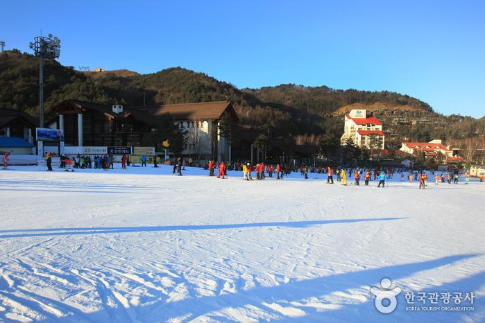 Yongpyong Resort Ski & Snowboard (용평리조트 스키장)
