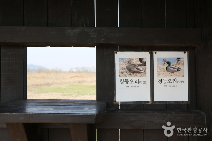 Gangseo Marsh Ecological Park (강서습지생태공원)