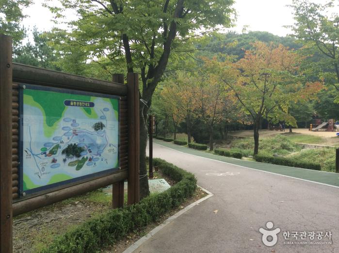 Saut à l'élastique au Parc Yuldong (율동공원번지점프)