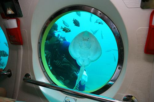 마라도잠수함
