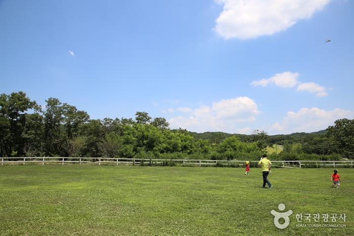 아이들과 즐거운 목장 체험 떠나요! 여주 은아목장 사진