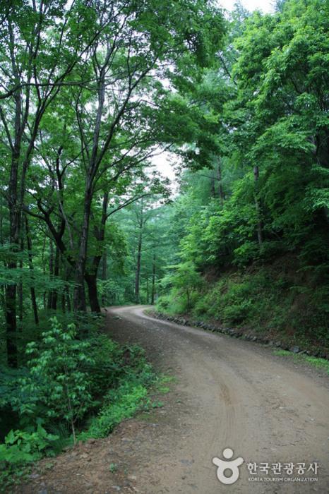 国立徳裕山自然休養林(국립 덕유산자연휴양림)