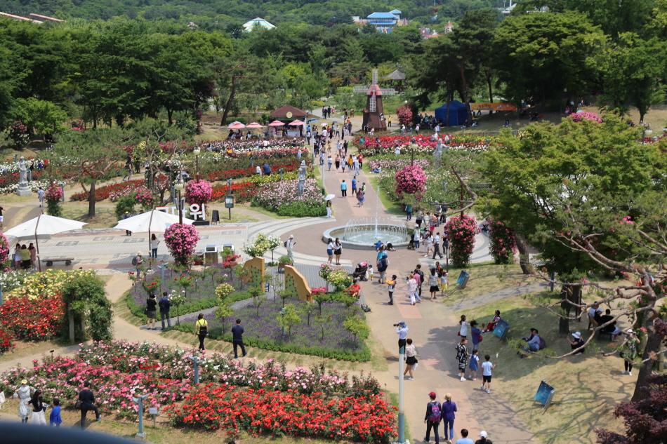 서울대공원 테마가든 장미원