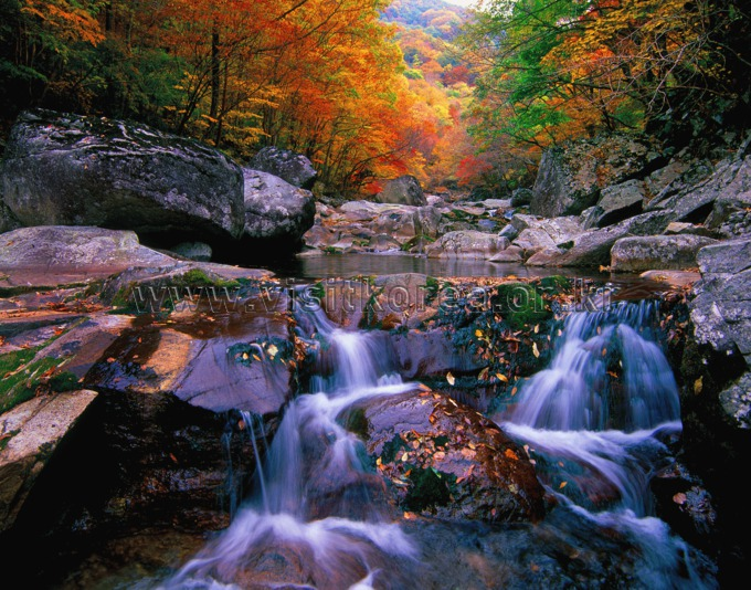 Jirisan National Park (Nogodan Peak Section) (지리산국립공원 (지리산 노고단))