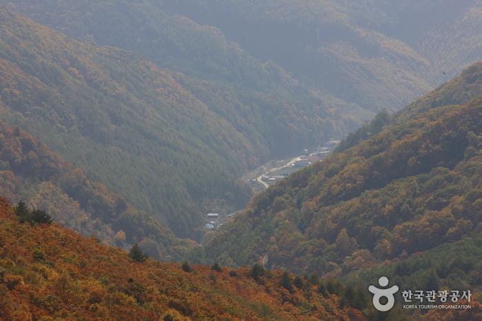 Manhangjae Hill (만항재)