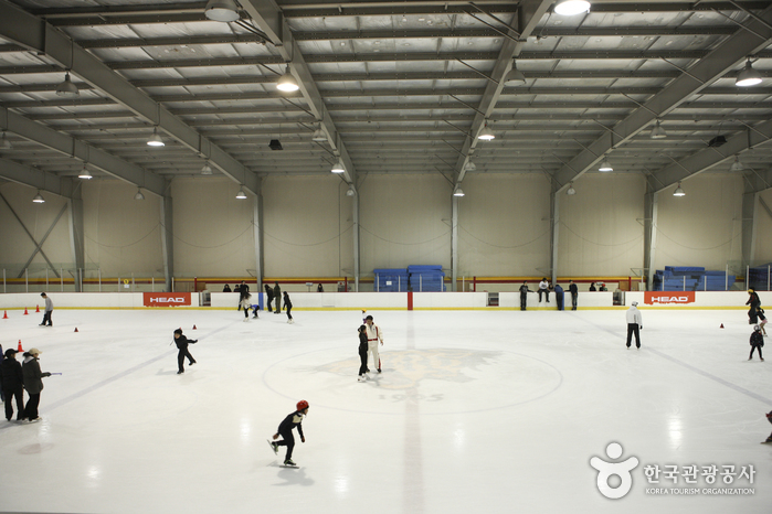 Korea University Ice Skating Rink (고려대학교 아이스링크)