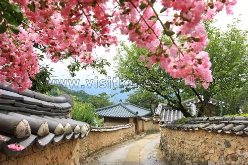 星州ハンゲ村(성주 한개마을)