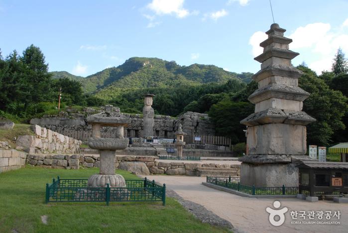 Chungju Mireukdaewon Stone Temple Site (충주 미륵대원지)