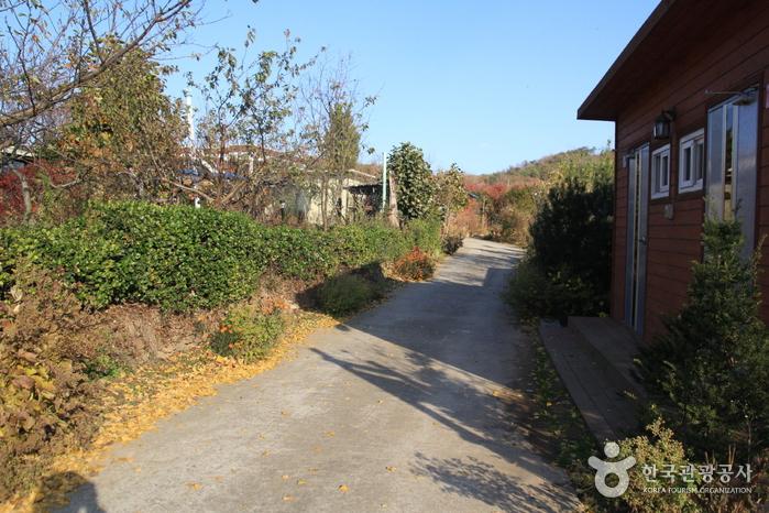 [Parcours 7 du chemin Ganghwa] Chemin vers la marée