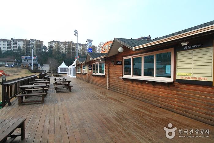 Bears Town Ski Resort (베어스타운리조트 스키장)