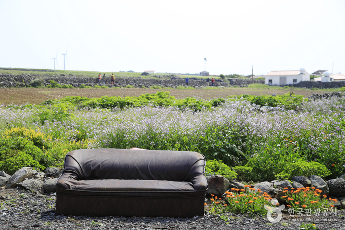 시골 정경이 고스란히 살아 있는 가파도