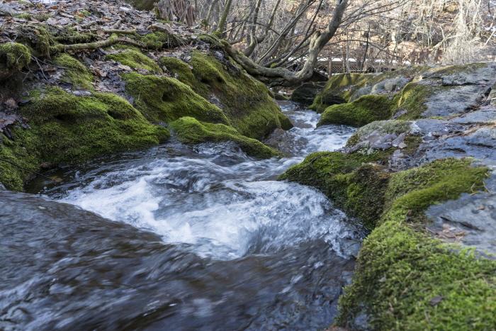 한강 발원지에서 시작하는 새해 첫 여행, 태백 검룡소