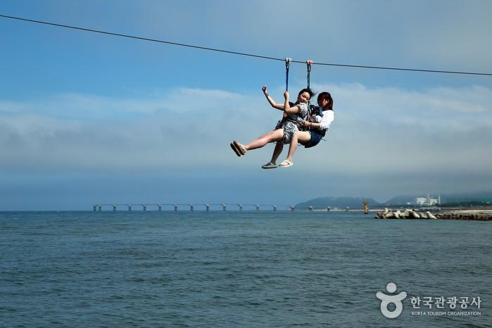 아라나비를 타고 바다 위를 날아가는 여성 두명