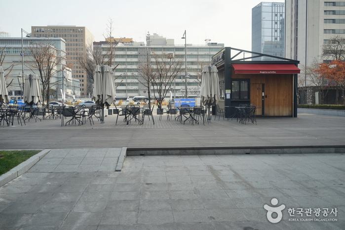 Парк Сечжонно (세종로공원)12