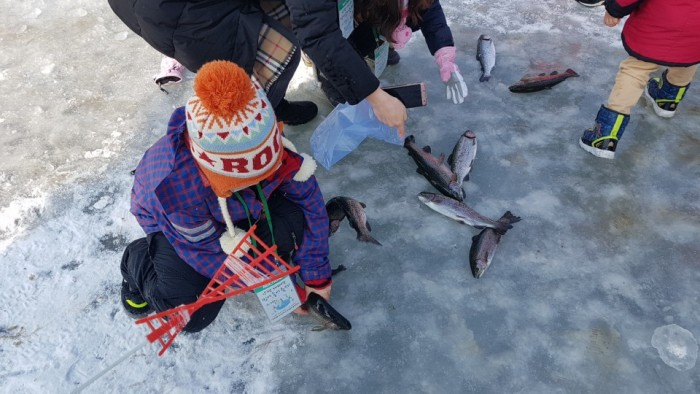 양평 대자연 빙어송어축제 2020