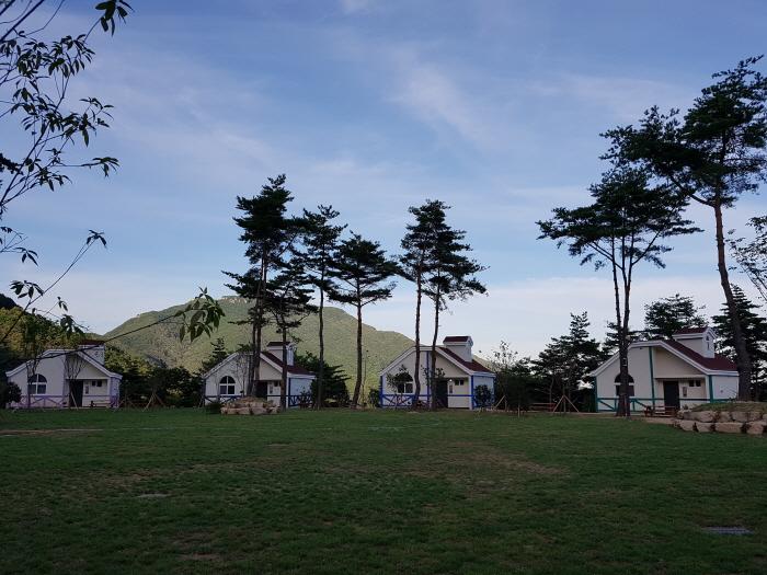 국립 달음산자연휴양림