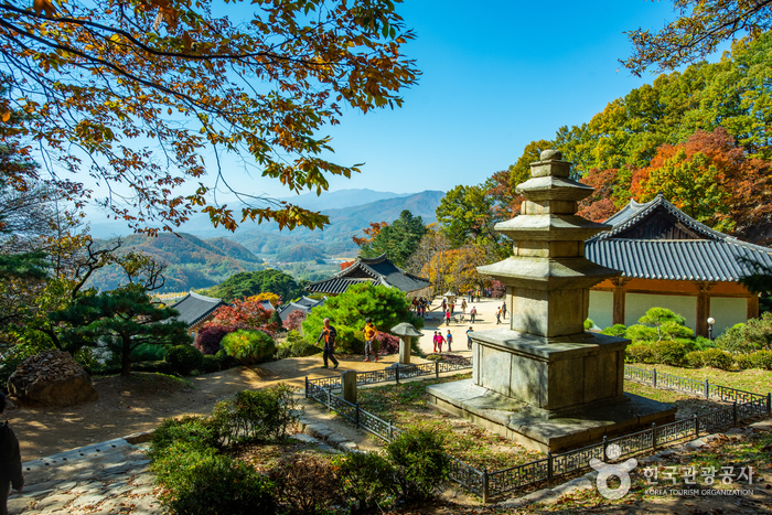 Tempel Buseoksa [UNESCO Welterbe] (부석사[유네스코 세계문화유산])