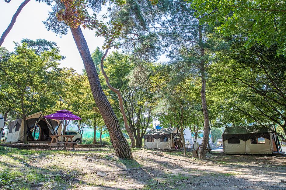 후평숲캠핑장