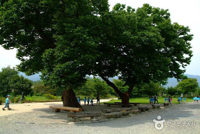 순천 낙안읍성 사진26