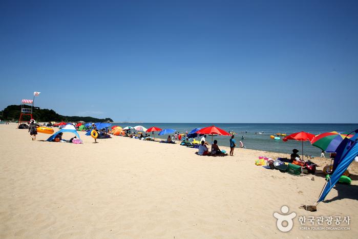 동호해변(양양)