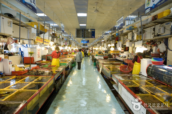 Jagalchi Market Live Fish Section (자갈치시장 활어부)