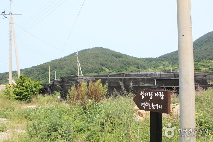 Cheongsando Slow Walking Festival (청산도 슬로걷기 축제)