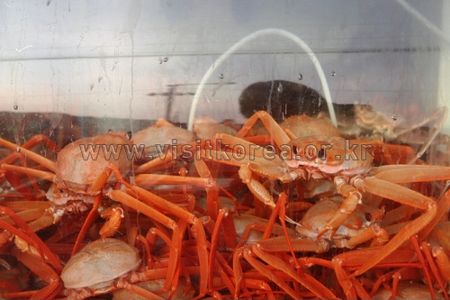 Uljin Snow Crab & Re...