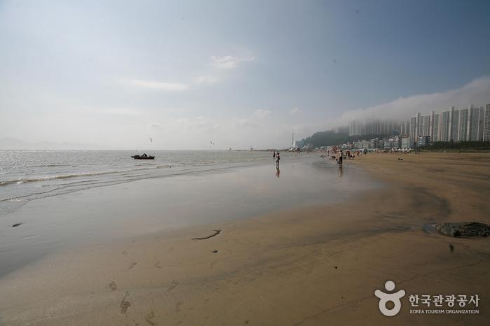 Dadaepo Beach (다대포해수욕장)