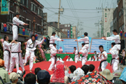 Seoul Yangnyeongsi Herb Medicine Culture Festival (서울약령시 한방문화축제)