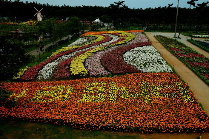 TAEAN F Festival (태안 백합꽃축제)