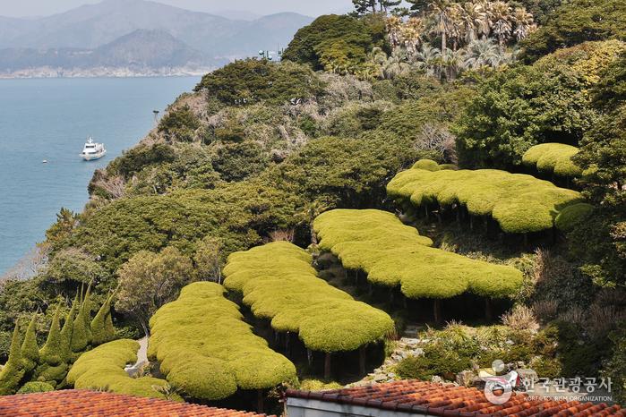 물의 정원 옆 나무들이 솜사탕처럼 몽실해 보인다.