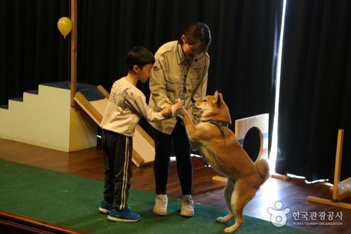 관람객과 함께 즐기는 공연(어른의 도움으로 두발로 선 개와 어린아이가 손을 마주치고 있다.)
