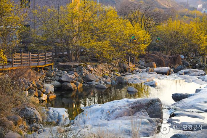 Gurye Sansuyu Village (구례 산수유마을)