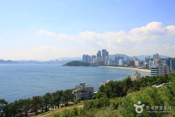 Haeundae Special Tourist Zone (해운대 관광특구)