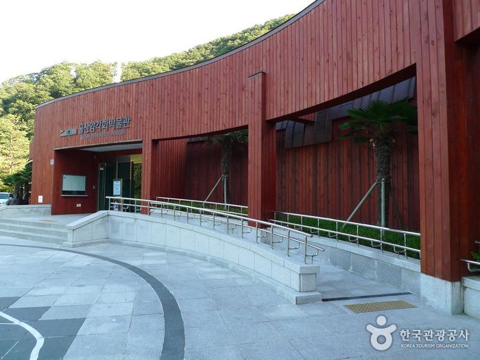 蔚山岩刻画博物館(울산암각화박물관)