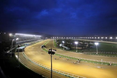 Seoul Lets Run Park (Seoul Race Park) (렛츠런파크서울 (서울경마공원))