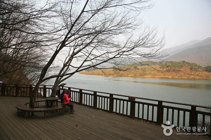 호수전망대 풍경
