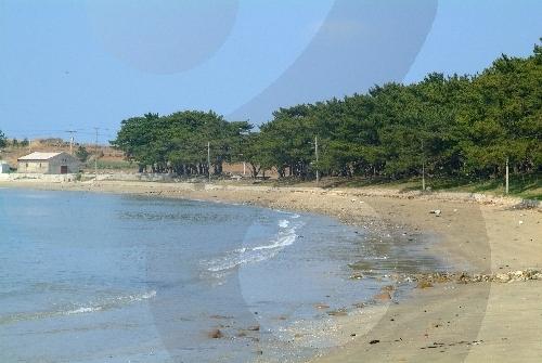 Cheongsan Jiri Beach (지리청송해변)