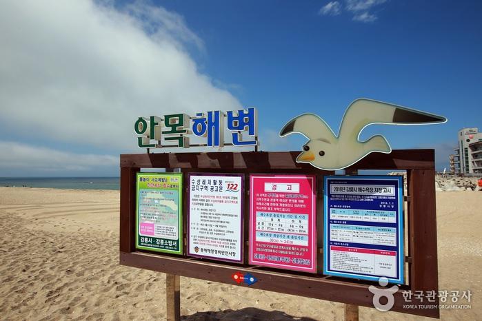 안목 해변- 게시판이 놓여져 있다.