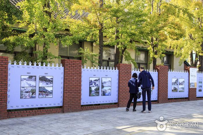담벼락갤러리에 전시된 작품을 감상하는 관광객