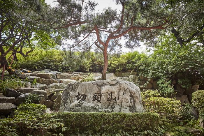 Dream Forest (북서울 꿈의숲)