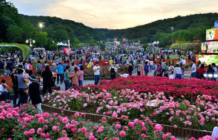 蔚山大公園バラ祭り(울산대공원 장미축제)