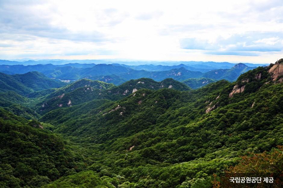 Songnisan National Park (Chungcheongbuk-do Section) (속리산국립공원(충북))
