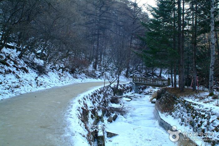 Gugok Falls (구곡폭포)