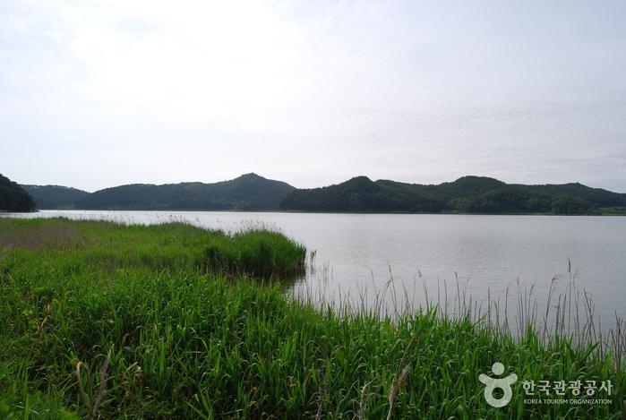 Озеро Хвачжинпхо (화진포)17